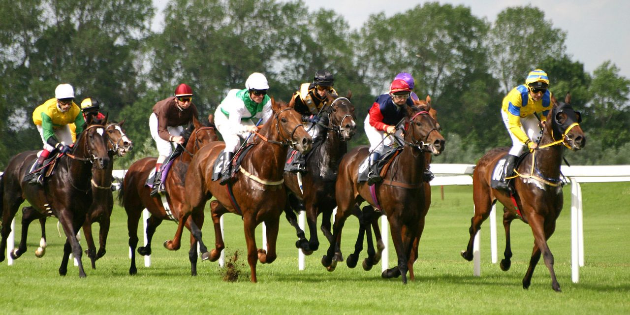Horse Racing - Review of 2008 Kentucky Derby